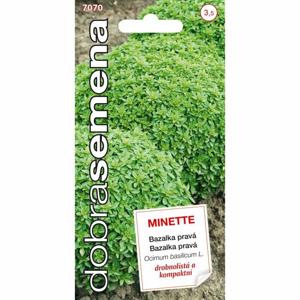 Bazalka MINETTE (DS)