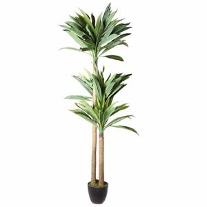 Dracena Malibu zelená umělá 170cm