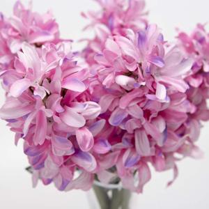 Hyacint řezaný umělý 35cm růžový