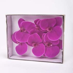 Phalaenopsis květ OTLEY umělý červený