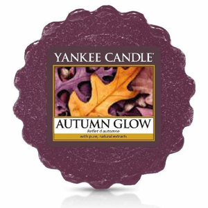 Vosk YANKEE CANDLE 22g Autumn Glow