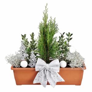 Zimní truhlík s rostlinami - čokoláda 60cm s osvětlením